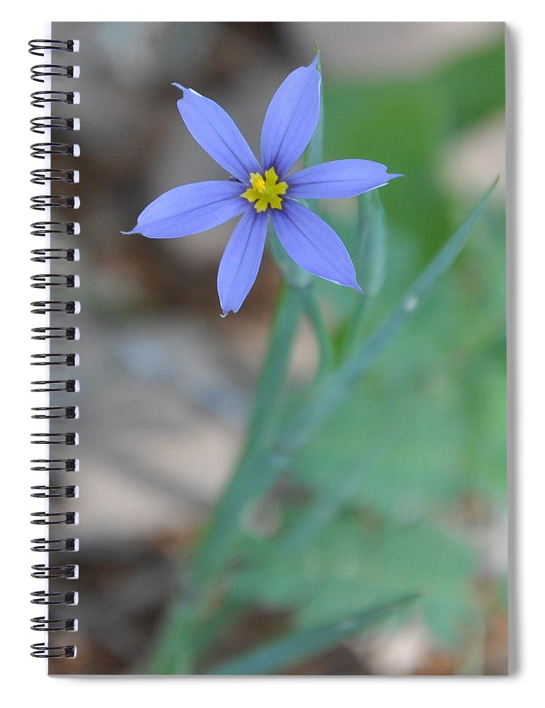 Blue Spiral Notebook featuring the photograph Blue Flower by Frank Madia
