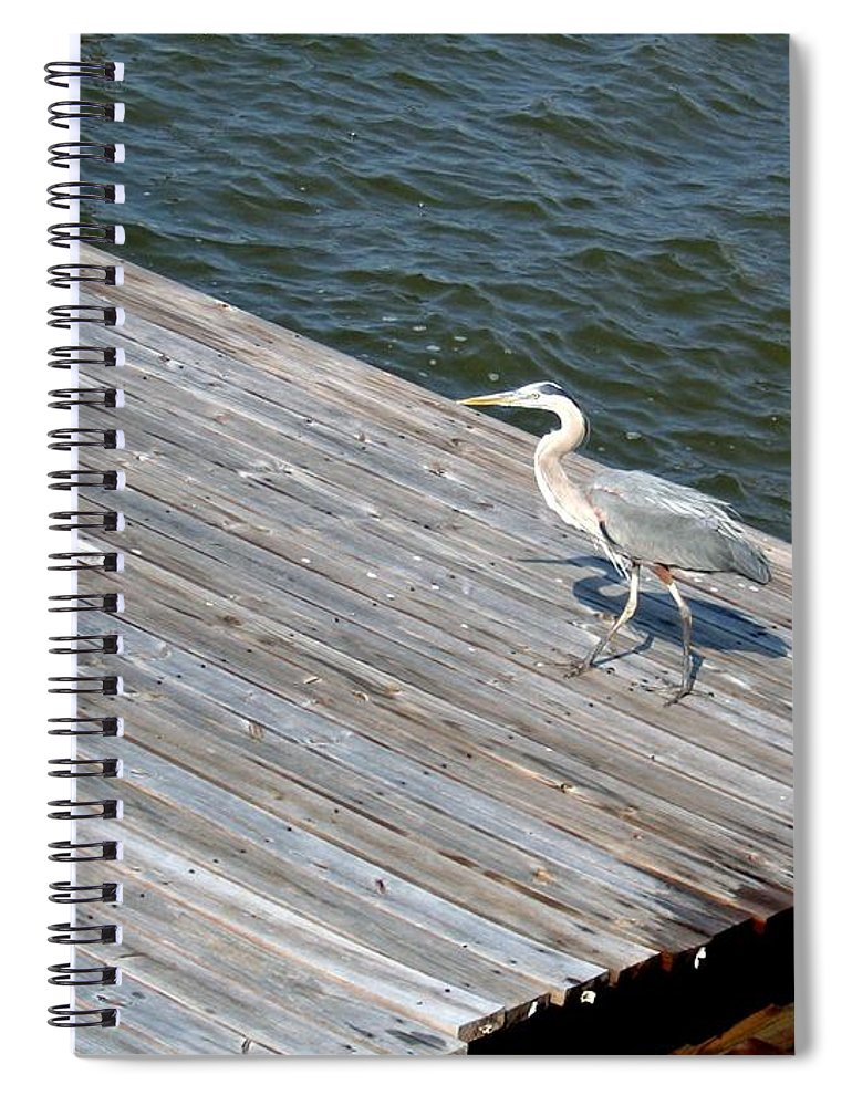 Photograph Spiral Notebook featuring the photograph Blue Heron On Dock by Marian Bell