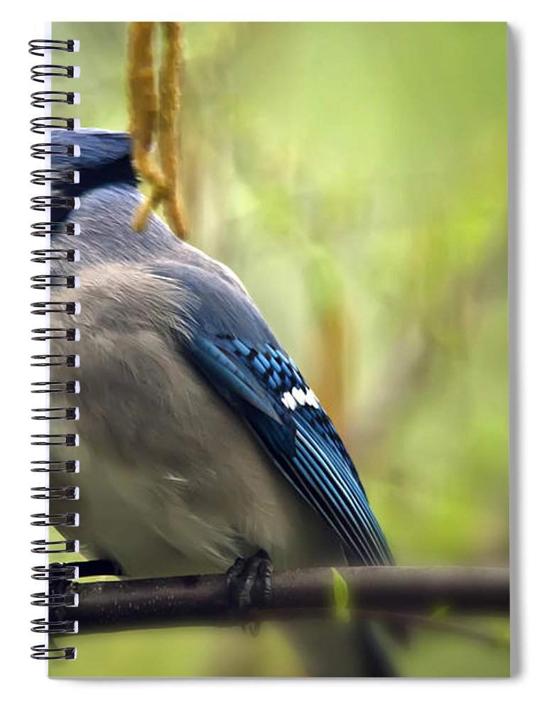 Bird Spiral Notebook featuring the photograph Blue Jay On A Misty Spring Day by Lois Bryan