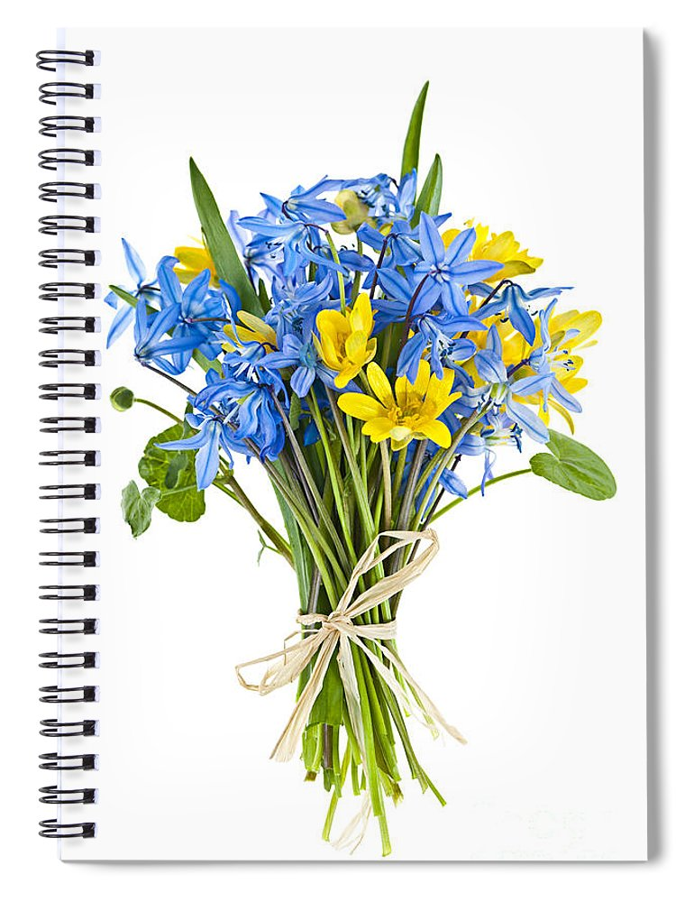 Flowers Spiral Notebook featuring the photograph Bouquet Of Fresh Spring Flowers by Elena Elisseeva