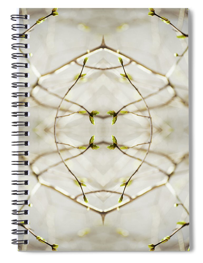 Fragility Spiral Notebook featuring the photograph Branches And Buds Of Syringa Tree by Silvia Otte