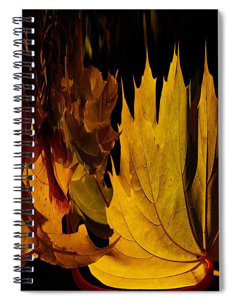 Lehto Spiral Notebook featuring the photograph Burning Fall by Jouko Lehto