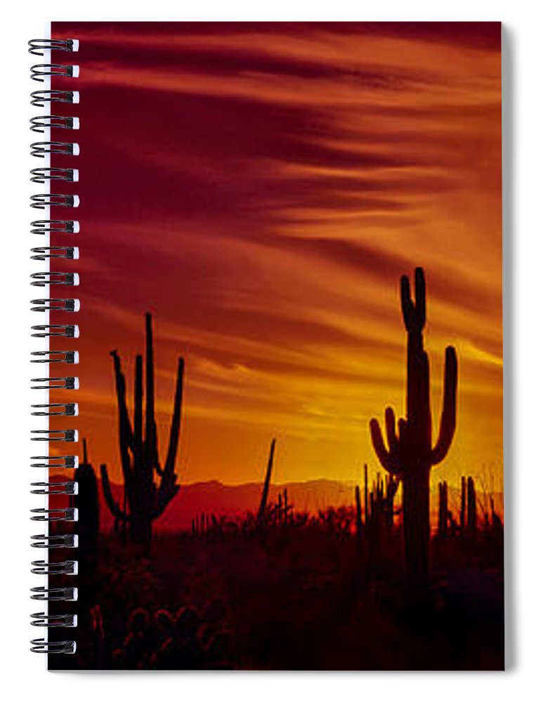 Cactus Spiral Notebook featuring the photograph Cactus Glow by Mary Jo Allen