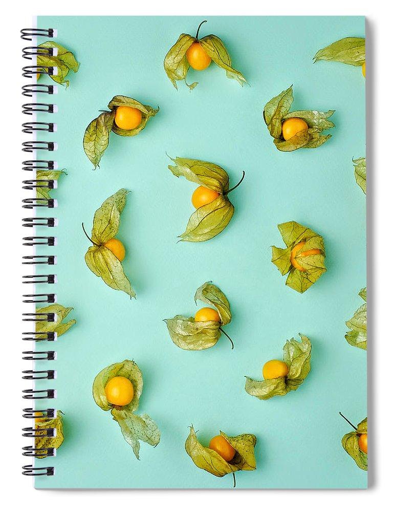 Winter Cherry Spiral Notebook featuring the photograph Cape Gooseberries Physalis, Winter by Juj Winn