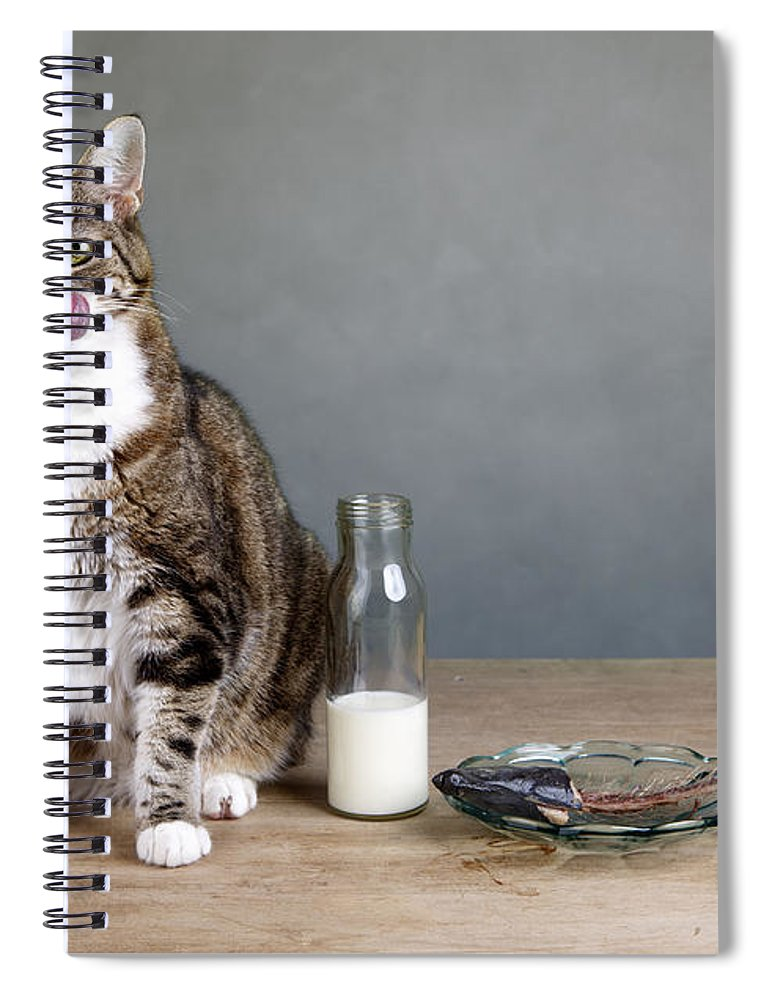Cat Spiral Notebook featuring the photograph Cat And Herring by Nailia Schwarz