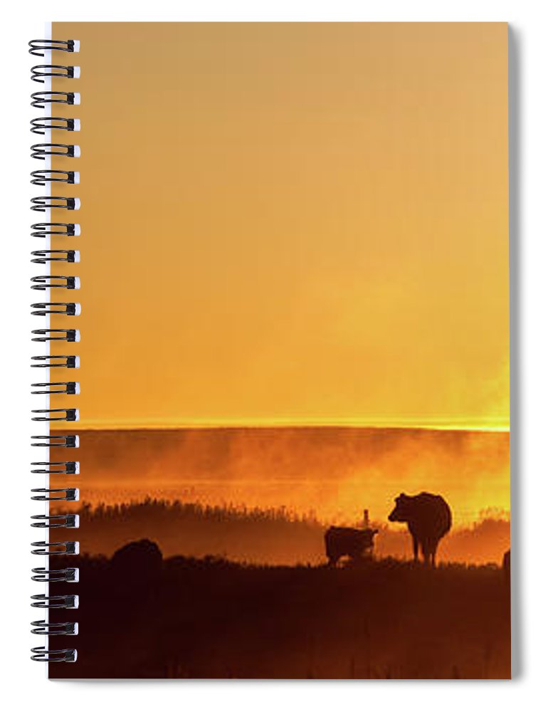 Scenics Spiral Notebook featuring the photograph Cattle Silhouette Panorama by Imaginegolf