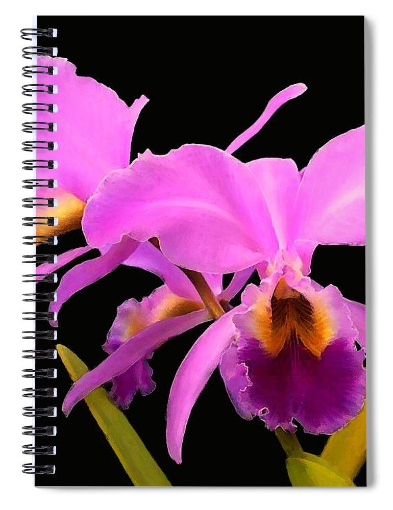 Cattleya Spiral Notebook