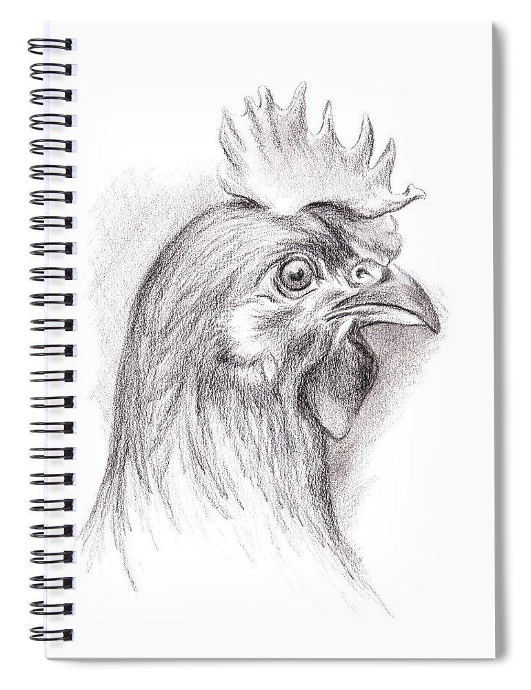 Chicken Spiral Notebook featuring the drawing Chicken Portrait In Charcoal by MM Anderson