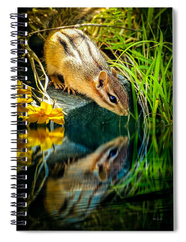 Chipmunk Spiral Notebook featuring the photograph Chipmunk Reflection by Bob Orsillo
