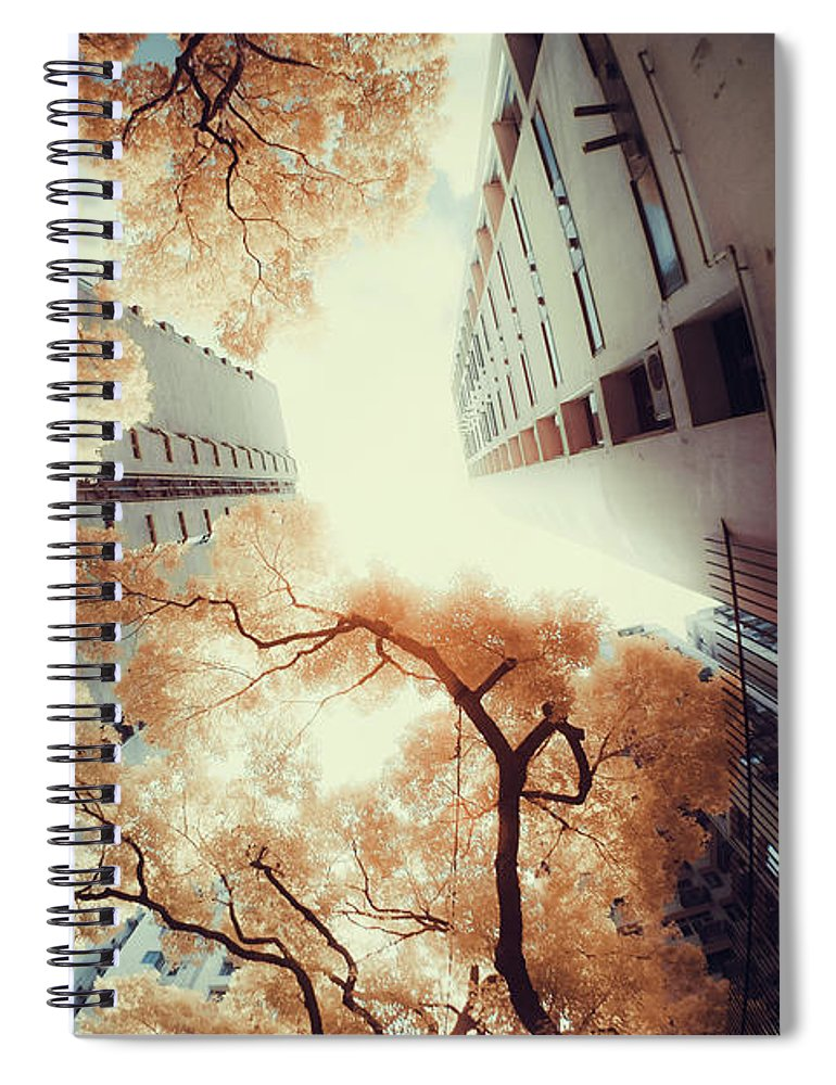 Tranquility Spiral Notebook featuring the photograph City In Harmony With Nature by D3sign