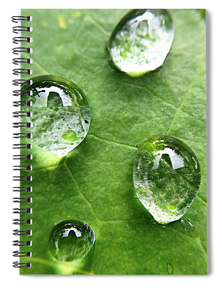 Douglasville Spiral Notebook featuring the photograph Close-up Of Water Drops On Leaf by Brian Harrison / Eyeem