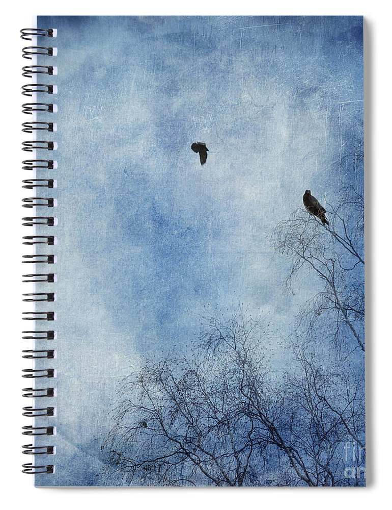 Dazzling Blue Spiral Notebook featuring the photograph Come Fly With Me by Priska Wettstein