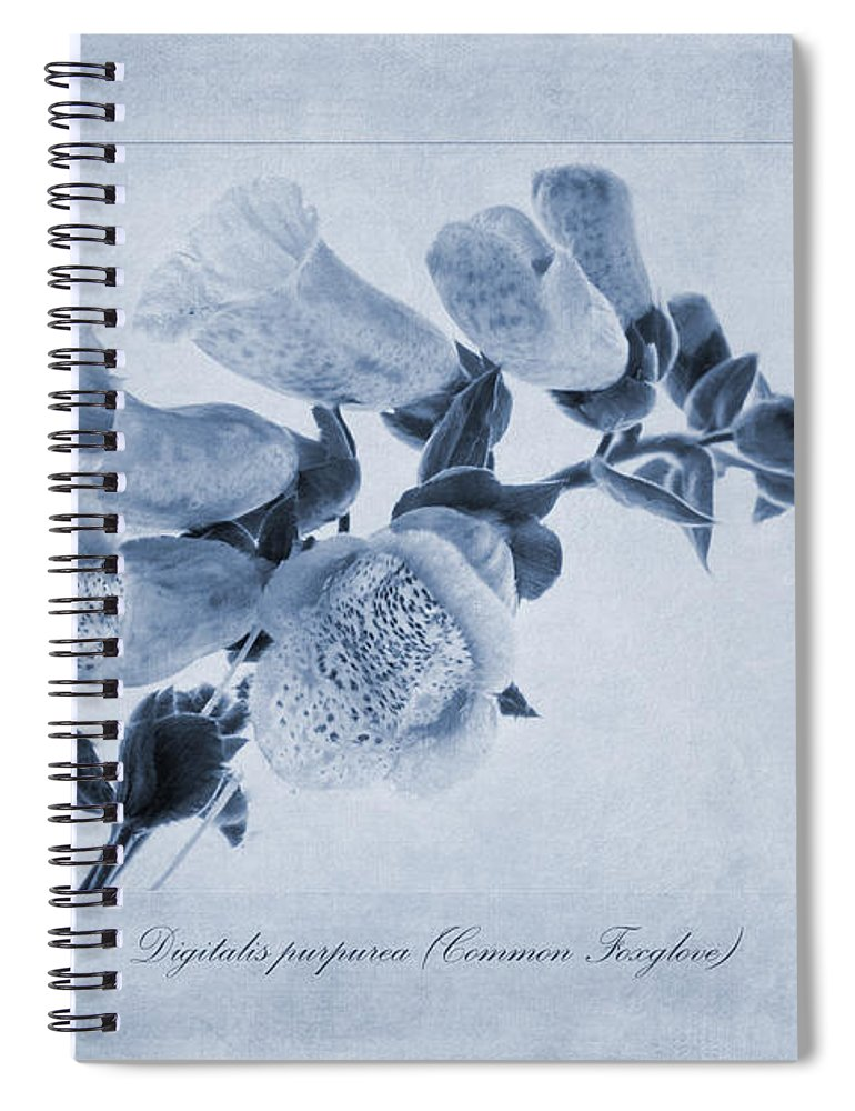 Foxglove Painting Spiral Notebook featuring the painting Common Foxglove Cyanotype by John Edwards