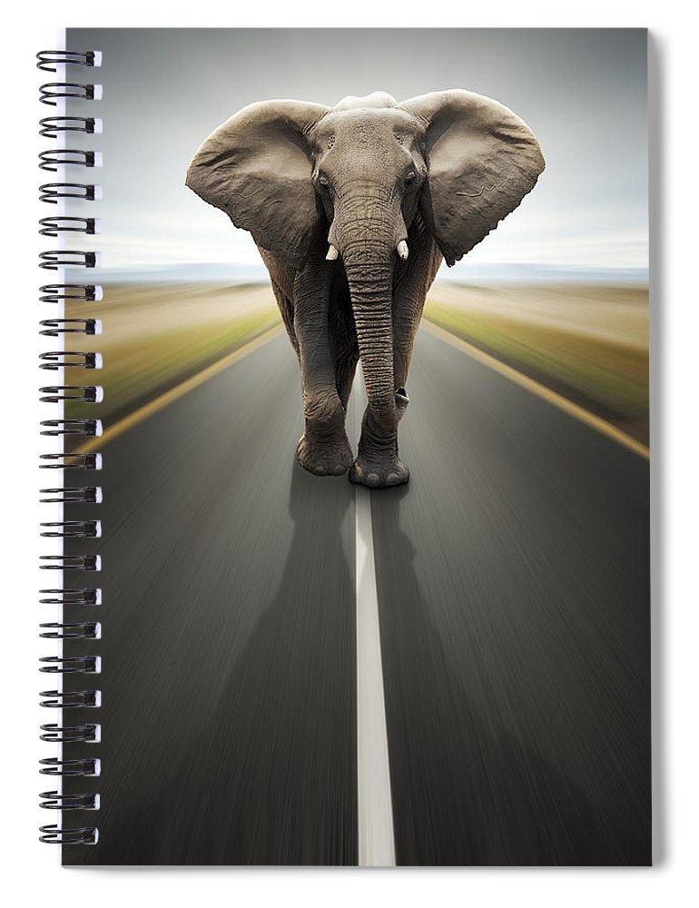Elephant Spiral Notebook featuring the photograph Heavy Duty Transport / Travel By Road by Johan Swanepoel