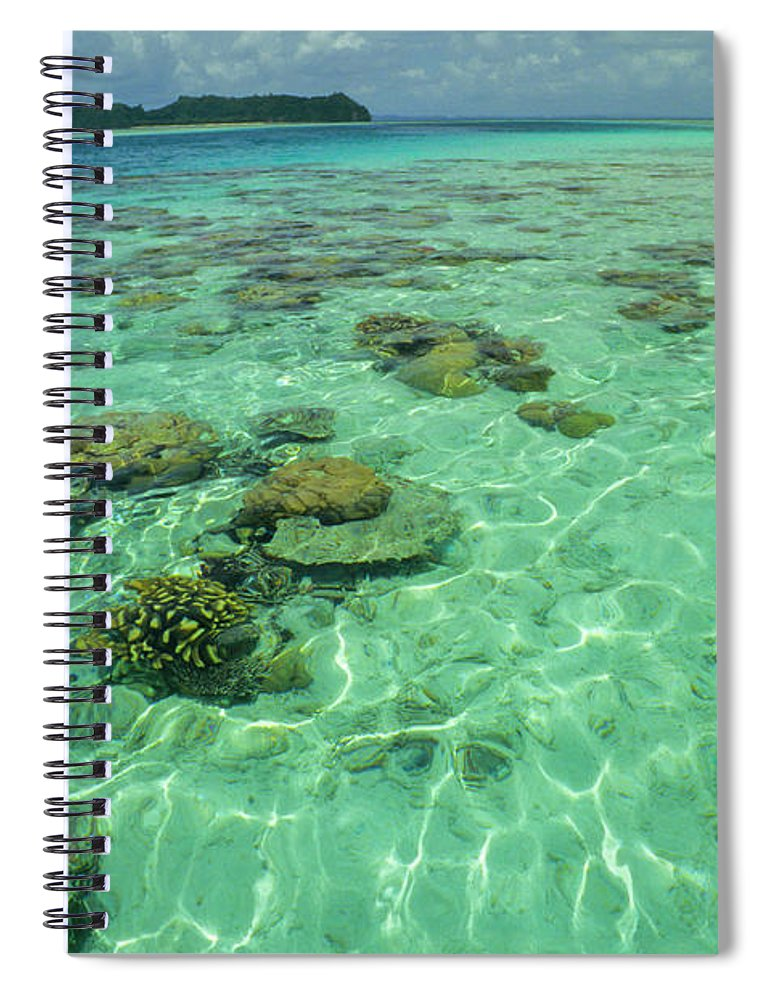 Water's Edge Spiral Notebook featuring the photograph Coral Paradise by Tammy616