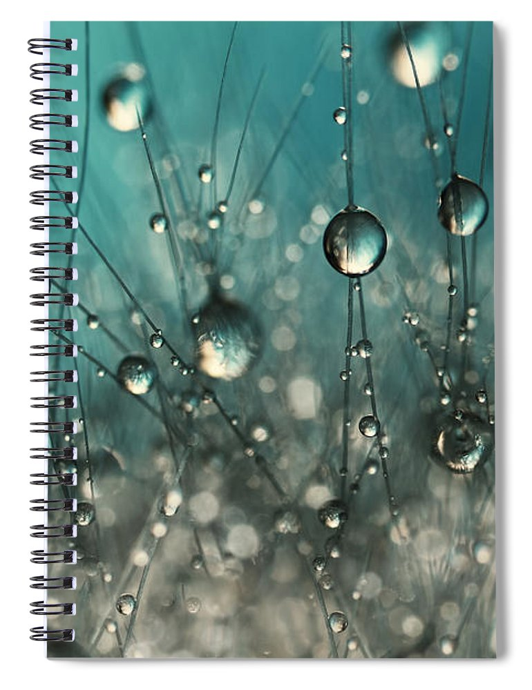 Cactus Spiral Notebook featuring the photograph Crazy Cactus Sparkles by Sharon Johnstone