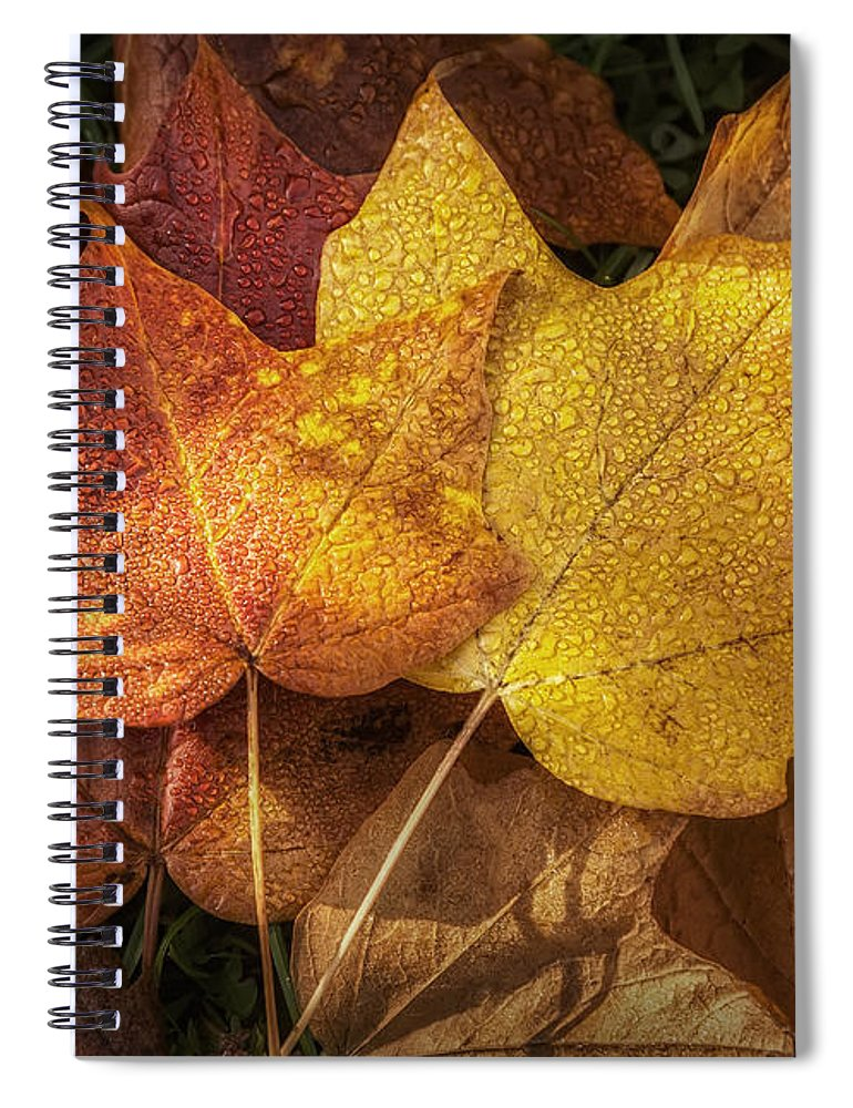 Leaf Spiral Notebook featuring the photograph Dew on Autumn Leaves by Scott Norris