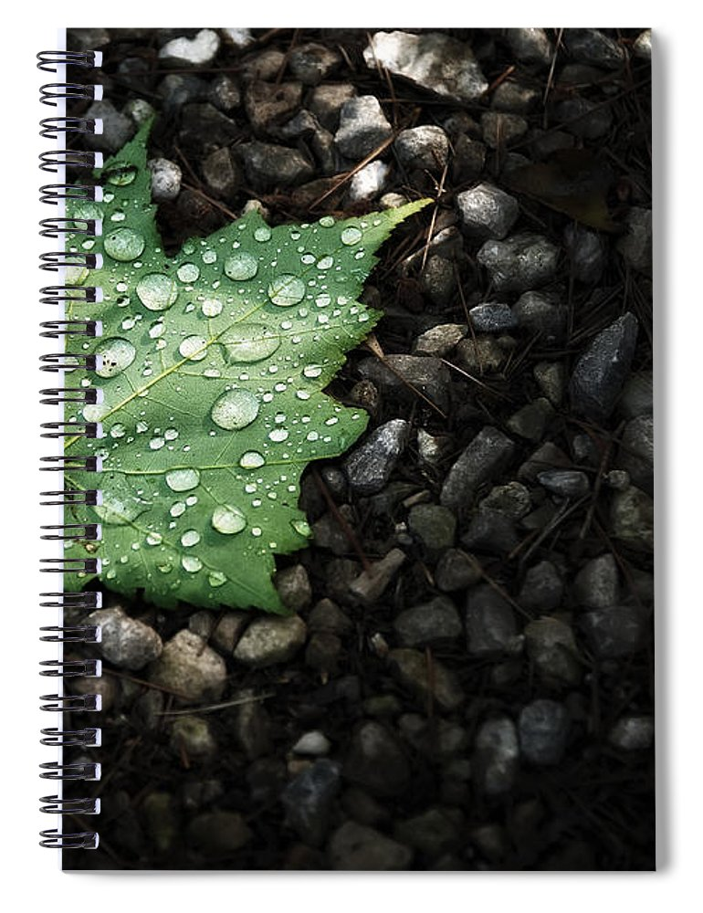 Leaf Spiral Notebook featuring the photograph Dew on Leaf by Scott Norris