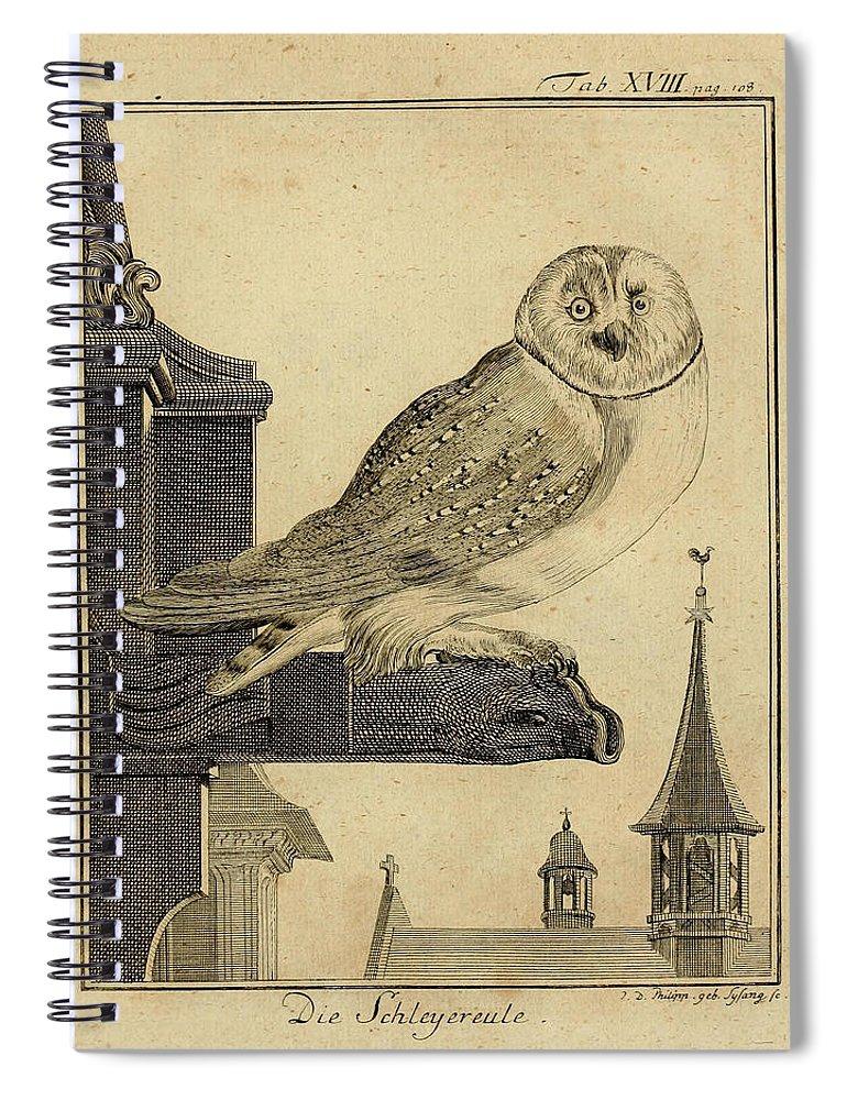 Die Spiral Notebook featuring the drawing Die Schleyer Eule by Philip Ralley