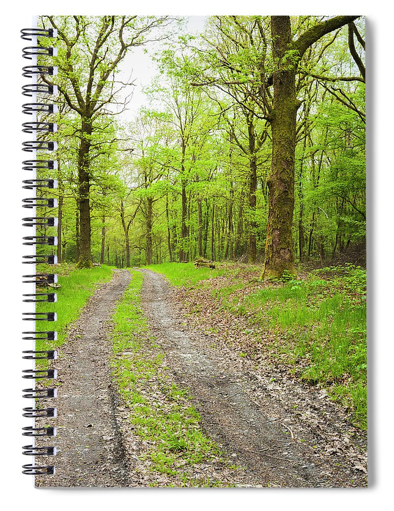 Scenics Spiral Notebook featuring the photograph Dirt Road Surrounded By Trees In by Mike Kemp Images