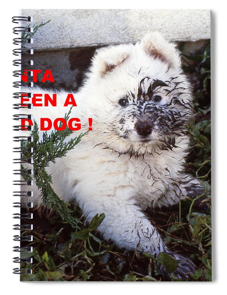 Dirty Dog Christmas Card Spiral Notebook for Sale by Ginny Barklow