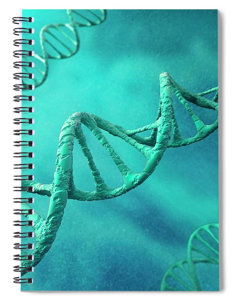 Color Image Spiral Notebook featuring the digital art Dna Molecules, Artwork by Science Photo Library - Andrzej Wojcicki