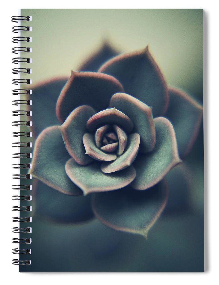 Outdoors Spiral Notebook featuring the photograph Echeveria Macro by Con Ryan