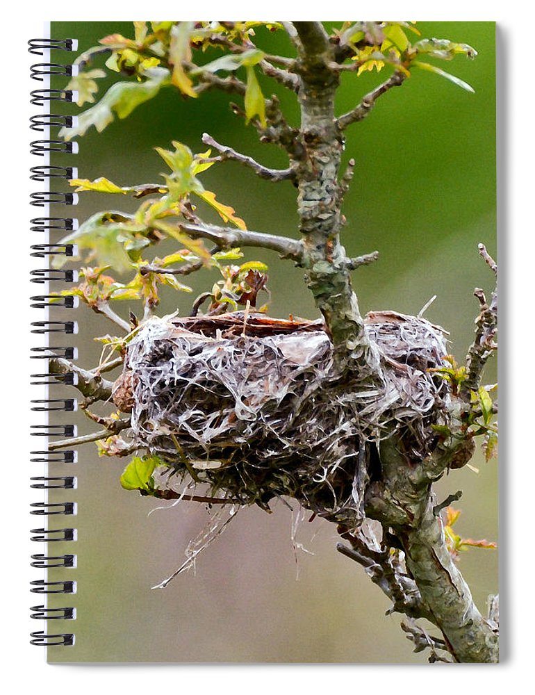 Empty Nest Spiral Notebook featuring the photograph Empty Nest by Kerri Farley
