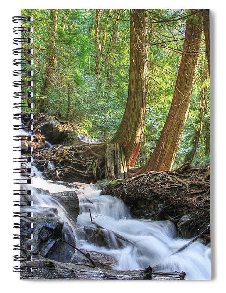 Stream Spiral Notebook featuring the photograph Enchanted Wood by Eti Reid