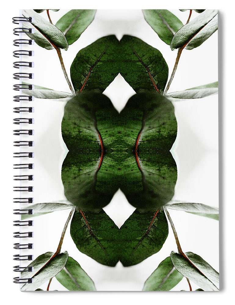 Tranquility Spiral Notebook featuring the photograph Eucalyptus Leaves by Silvia Otte