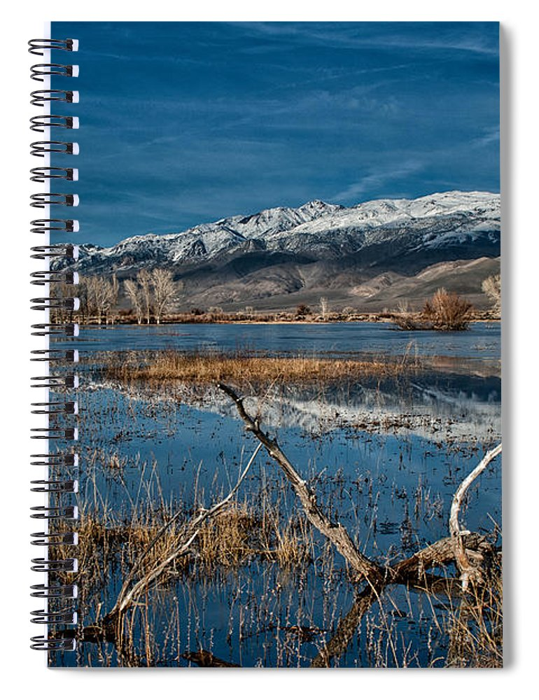 Pond Spiral Notebook featuring the photograph Farmers Pond by Cat Connor