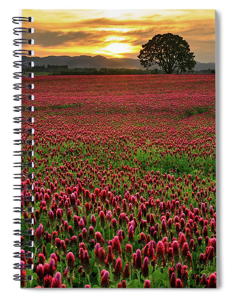 Scenics Spiral Notebook featuring the photograph Field Of Crimson Clover With Lone Oak by Jason Harris