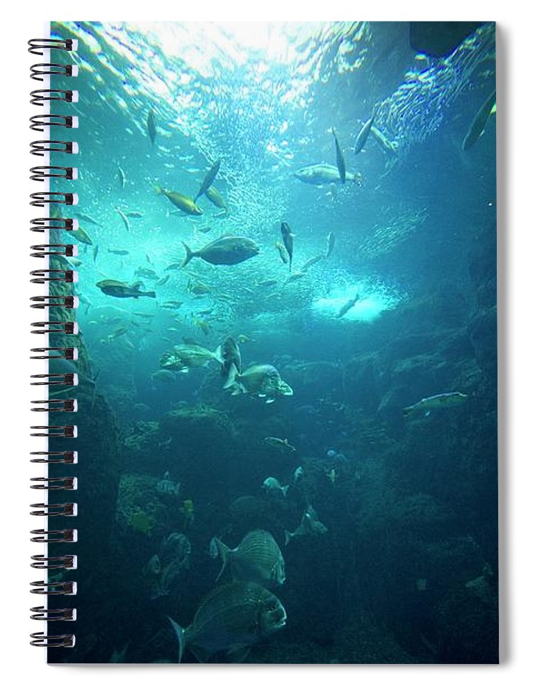 Underwater Spiral Notebook featuring the photograph Fishes by By Tddch