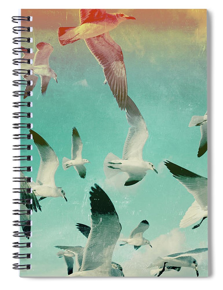 Animal Themes Spiral Notebook featuring the photograph Flock Of Seagulls, Miami Beach by Michael Sugrue