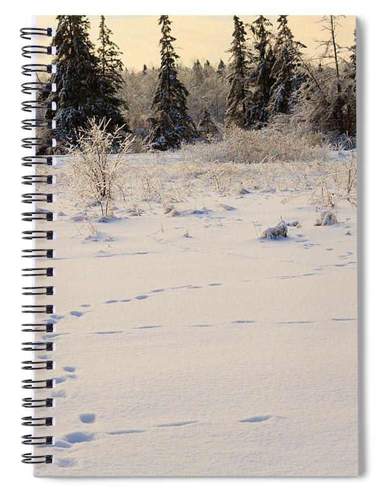 Footprints Spiral Notebook featuring the photograph Footprints In Fresh Snow by Louise Heusinkveld