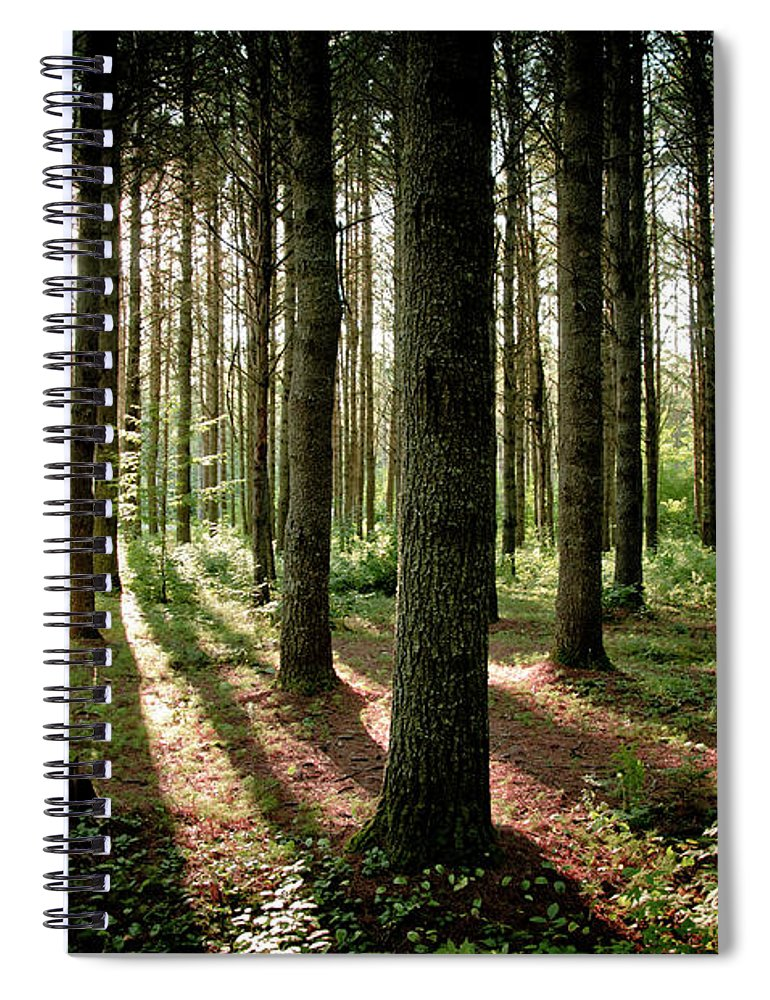 Tranquility Spiral Notebook featuring the photograph Galarneau by Guillaume Seguin