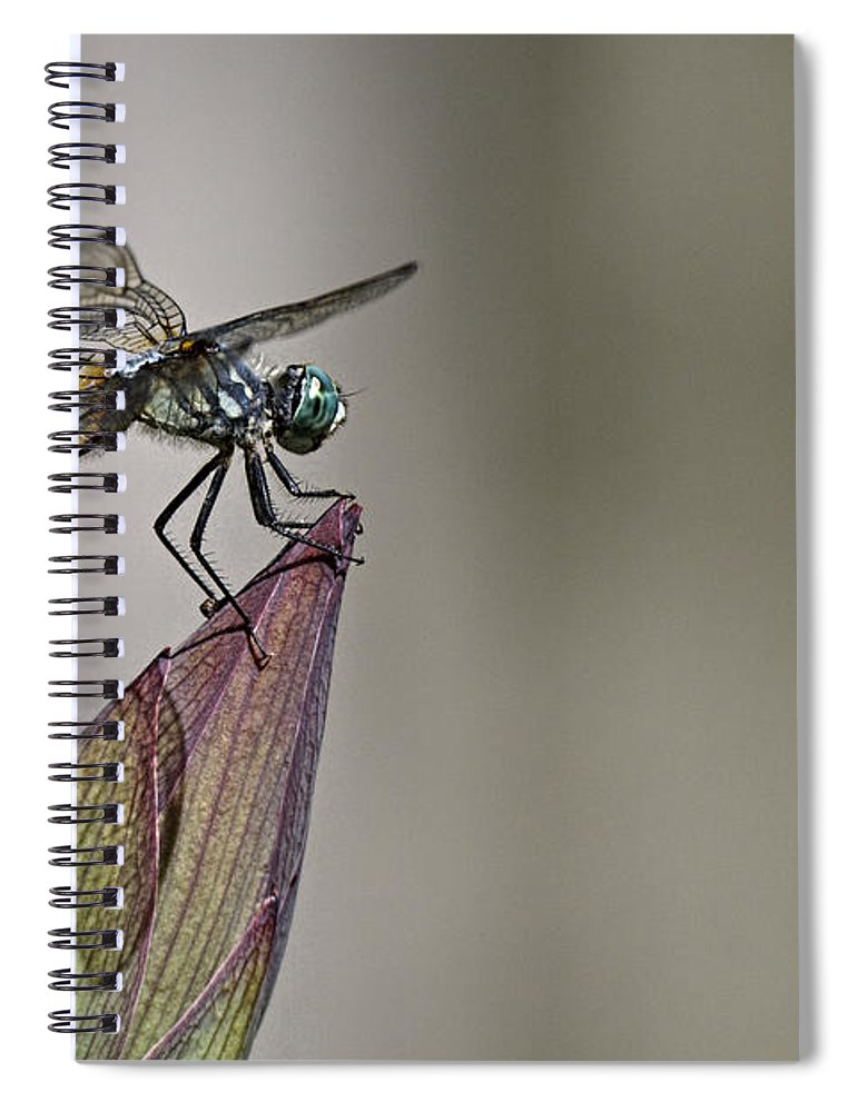 Get A Grip Spiral Notebook featuring the photograph Get A Grip by Wes and Dotty Weber