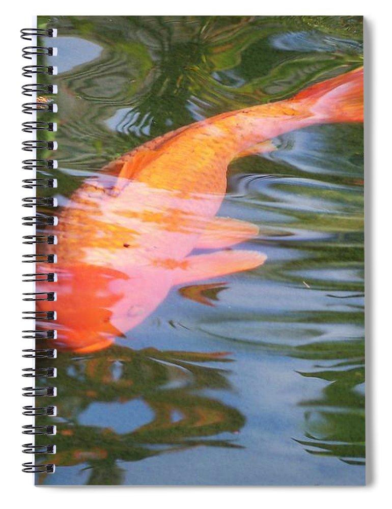 Golfish Spiral Notebook featuring the photograph Goldfish by Cornelia DeDona