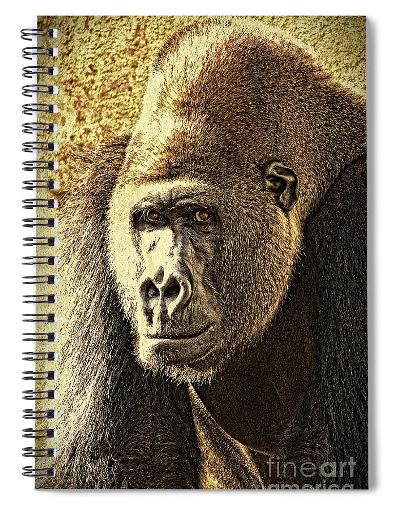 Gorilla Spiral Notebook featuring the photograph Gorilla Portrait 2 by Heiko Koehrer-Wagner