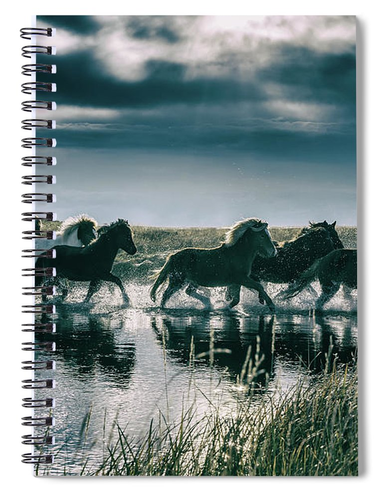 Horse Spiral Notebook featuring the photograph Group Of Horses Crossing A River by Arctic-images