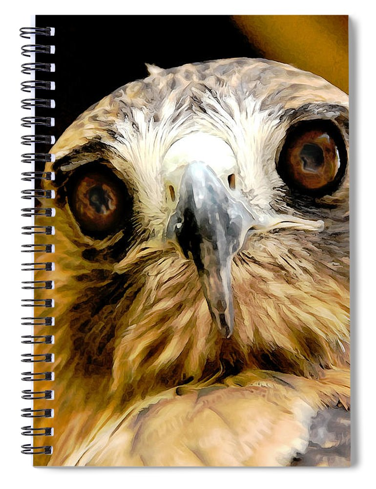 Hawk Spiral Notebook featuring the photograph Hawkeye by Lois Bryan
