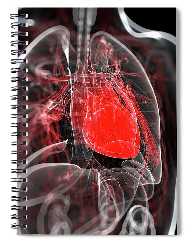 Physiology Spiral Notebook featuring the digital art Heart Anatomy, Artwork by Sciepro