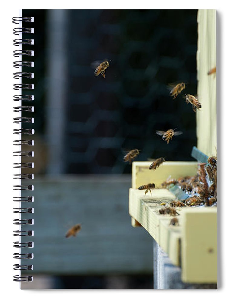 Animal Themes Spiral Notebook featuring the photograph Honey Bees Flying Around Hive Entrance by Monica Fecke