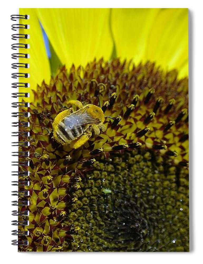 Bees Spiral Notebook featuring the photograph Honeybee In A Sunflower by Jeff Swan