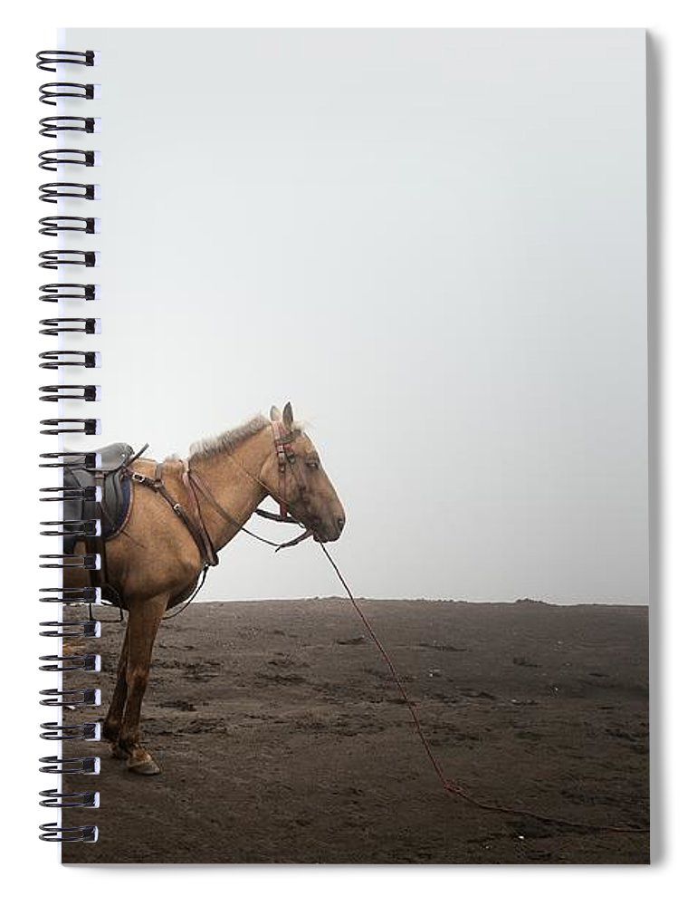 Horse Spiral Notebook featuring the photograph Horse On A Mountain On A Foggy Day by Carlina Teteris