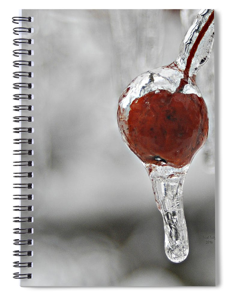 Flower Spiral Notebook featuring the mixed media Iced Berry by Trish Tritz