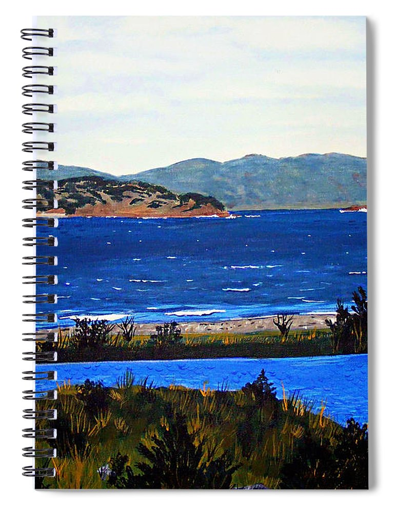 Islands Spiral Notebook featuring the painting Iona formerly Rams Islands by Barbara Griffin