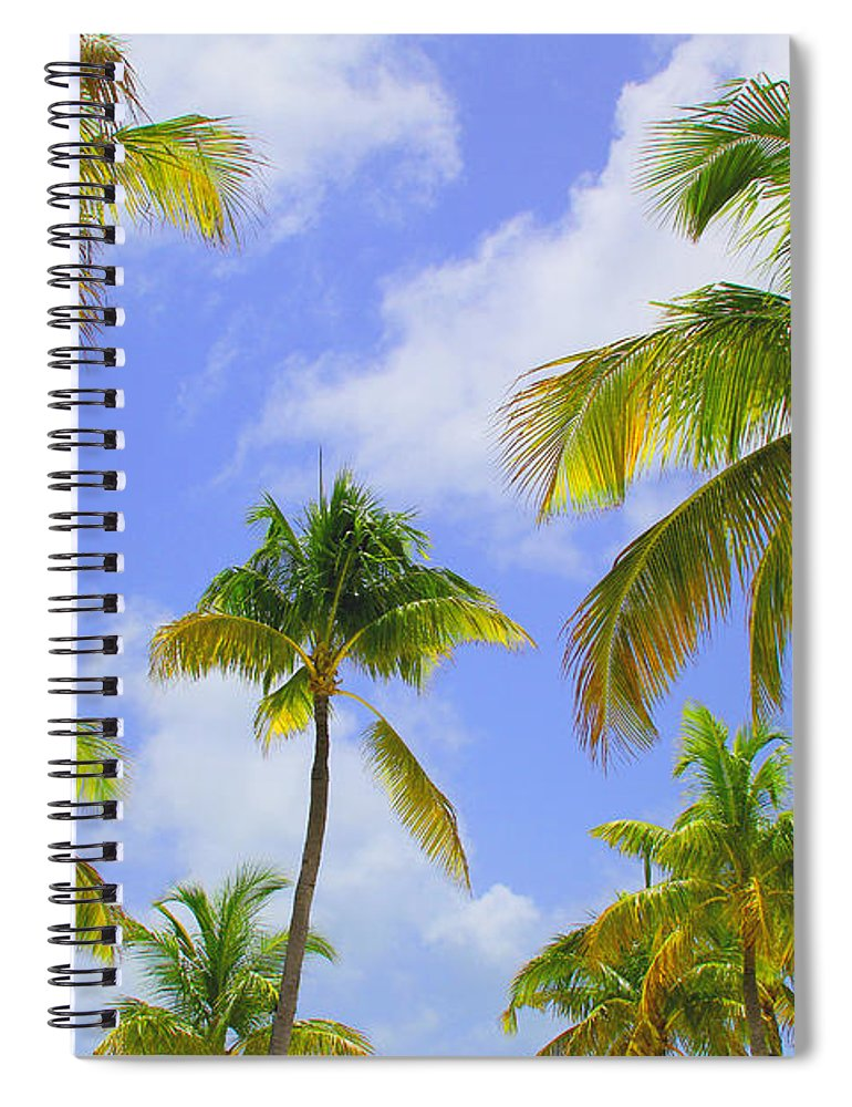 Palm Trees Spiral Notebook featuring the photograph Isla Palms by Carey Chen