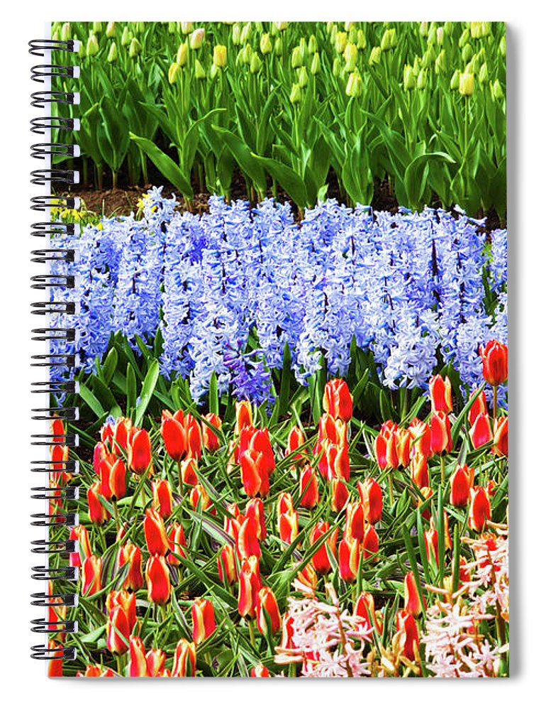 Flowerbed Spiral Notebook featuring the photograph Landscape With Tulips Keukenhof Gardens by Xenotar