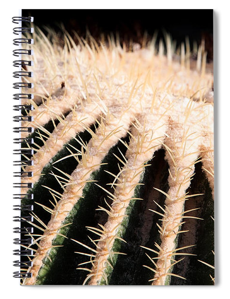 Botanical Spiral Notebook featuring the photograph Large Cactus Ball by John Wadleigh